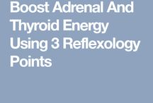 Reflexology and thyroid/adrenals
