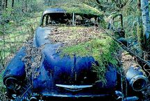 Abandoned - Cars / The beauty of abandoned cars displayed.