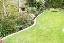 Växt design / Garden design