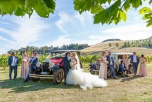 Hawke's Bay Weddings