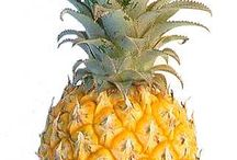 Anything pineapple / by Virginia Hasting