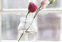 DIY pots de confiture vides / DIY frascos vacíos