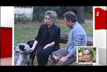 BB, интервью ( видео)