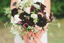 wedding flowers / by Lauren Hall