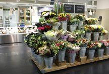 expo fiori freschi