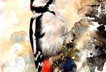 Művésze madarak