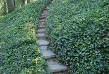 Terrasser og trapper til skråning