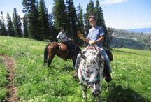 Retreats / by Moose Creek Ranch