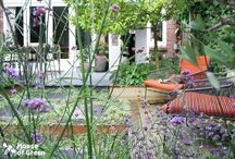 House of Green - City Garden / City garden designs by House of Green