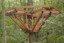 Treehouse building