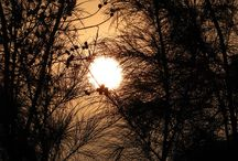 Nature_love