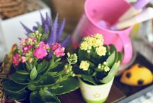 """Home and Garden / Arianne's biggest obsession is her loves for plants. She also aspire to be the """"Martha Stewart"""" kind of wife someday."""