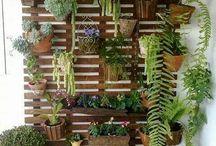 Muro verde - Garage