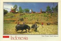 My PC/Indonesia