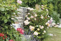 Ogrody / Wymarzony, wyśniony kawałek zieleniny - w większości jeszcze przebywający w sferze pobożnych życzeń :) Bajkowe róże, swobodne ogrody angielskie, inspirujące pomysły i zachwycające zdjęcia roślin. Bo lubimy.
