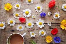 Flowers & Coffee