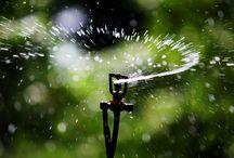 Irrigation & Horticulture Design