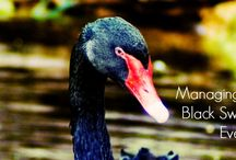 Black Swan Events / The disproportionate role of high-profile, hard-to-predict, and rare events that are beyond the realm of normal expectations in history, science, finance, and technology. The non-computability of the probability of the consequential rare events using scientific methods (owing to the very nature of small probabilities). | Google+: http://bit.ly/12BliBS