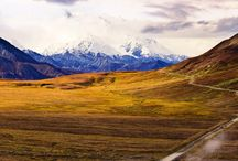 ALASKA ... beautiful wilderness / by Pamela Shipp Avery