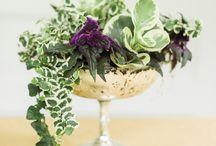 Event Plants: Living arrangements