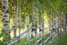 Puutarhan aidat ja portit