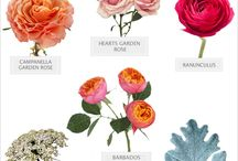 Bouquet recipes