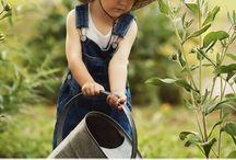Kids Gardens