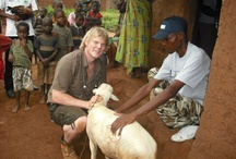 Luke Gamble / All you need to know about our C.E.O, supervet and all round good guy, Luke Gamble