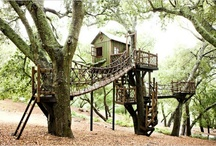 Treehouses...I want one!!! / by HeartsAbound
