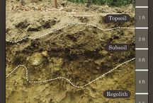 wine Terroir & Soil