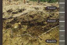 wine Terroir & Soil