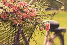 Fahrräder Blumen