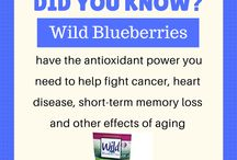 Wild Blueberry Facts