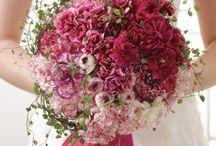 kichi eventi / Event e Wedding Planner - ORGANIZZAZIONE EVENTI E MATRIMONI