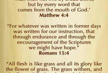 God's  Word is true and gives us true hope