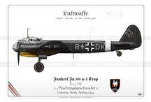 Sicilia 1940/1943 - Aviazione / Raccolta di immagini relative ai vari aspetti della Guerra aerea in Sicilia durante la Seconda Guerra Mondiale.