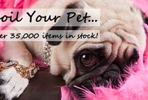 Pet Supplies Online in Australia / Show your pets distinctive style with our collection of pet charms. At Lush Pets we deal in adorable pet charms so that you can choose the perfect one for your best friend.