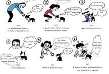 infografías animales