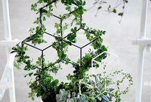 podpory / rośliny