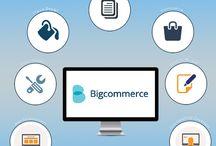Bigcommerce Developer