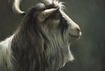Bok/geit schilderijen / Book/goat paintings, the paintings displayed represent a selection of Klimas' work.