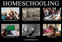 homeschooling / by Jill Medina