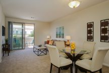 3877 Pell Place #215 / Light and bright newly painted one bedroom, one bathroom + den Pell Place condo.                              Minutes to Del Mar Beaches.