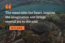 Ocean Quotes: Words that Inspire Marine Conservation / Collection of inspiring quotations about the ocean and marine life.