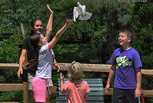 Barnyard Bonanza Show / by Cincinnati Zoo