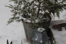 Woodland Christmas / Natural Christmas decor