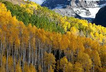 Colorful Colorado / by Mary Ratte