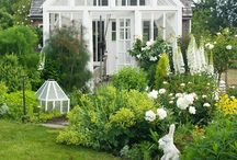 New Greenhouse / Ideas and inspiration for our new (smaller) greenhouse.