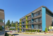 The Raleigh Apartment Homes / Discover a Community Redefined® in Burien, WA. Learn more about leasing & apartment availability: http://www.liveattheraleigh.com || 12415 Ambaum Boulevard SW, Burien, WA 98146 || Contact us to take a tour today: 260-241-6197 || @TheRaleighApts