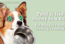 Puppy Training / by Natalie Rusinek